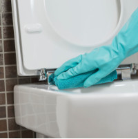 Great for ladies toilet