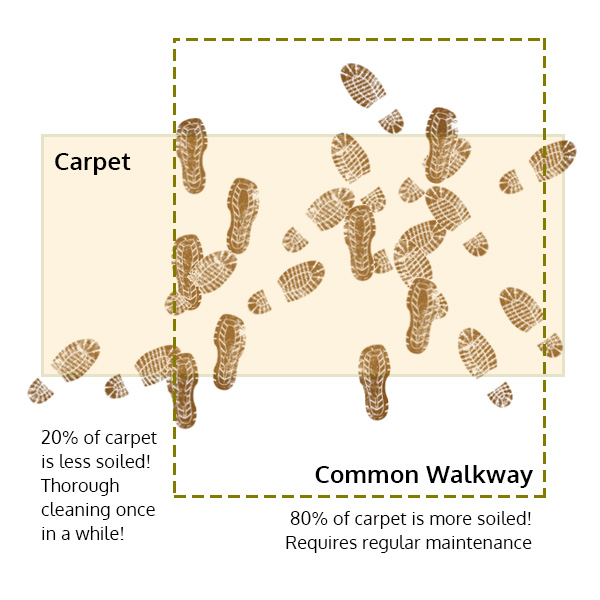 carpet-8020